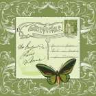 Butterfly Carte Postale Green