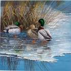 Three ducks on ice