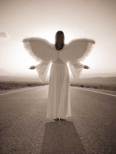 FTBR 1698 Road Angel