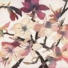 Magnolias XX