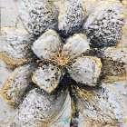Explosion of Petals