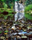 Oregon, Youngs River Falls Waterfall landscape