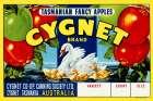 Cygnet Tasmanian Fancy Apples
