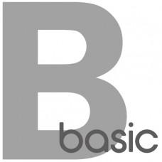 Basic Data Service-1 Year